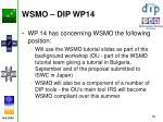 wsmo dip wp14