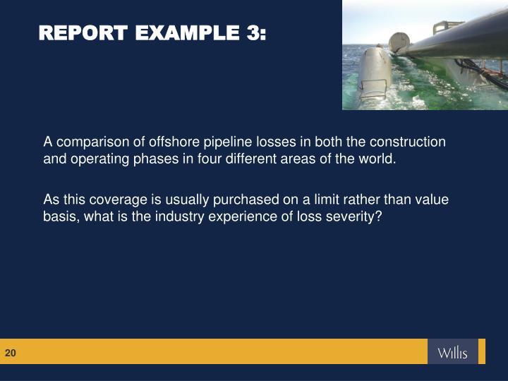 REPORT EXAMPLE 3: