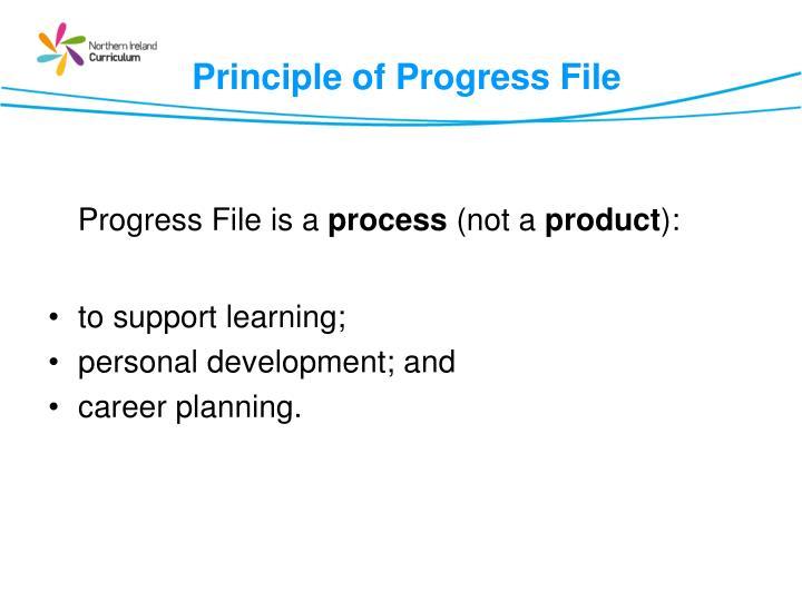 Principle of Progress File