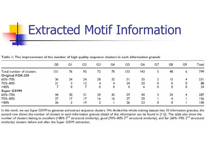 Extracted Motif Information
