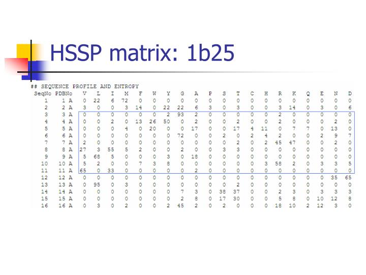 HSSP matrix: 1b25