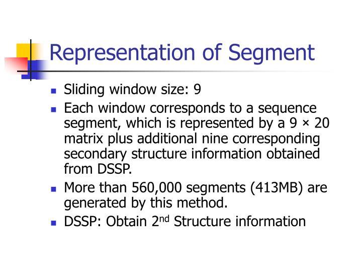 Representation of Segment