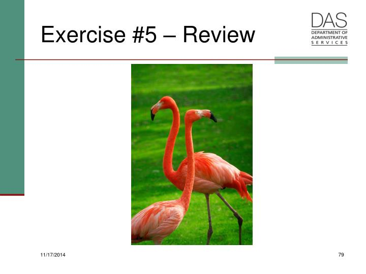 Exercise #5 – Review