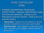 pure capitalism pme