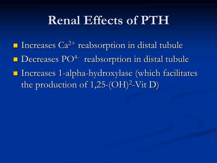 Renal Effects of PTH