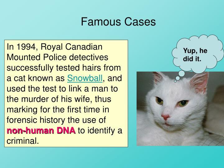 Famous Cases
