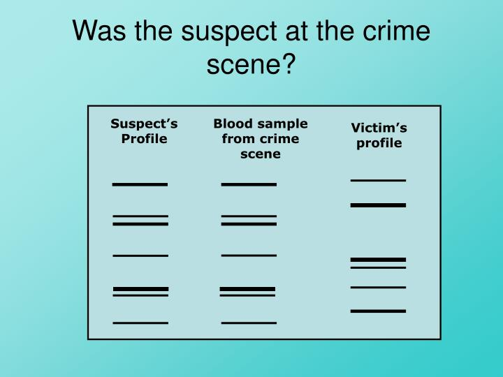 Was the suspect at the crime scene?