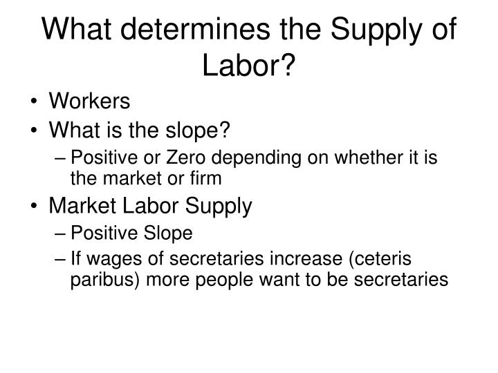 What determines the Supply of Labor?