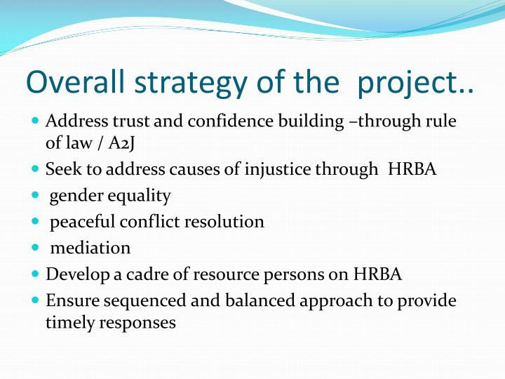Overall strategy of the  project..
