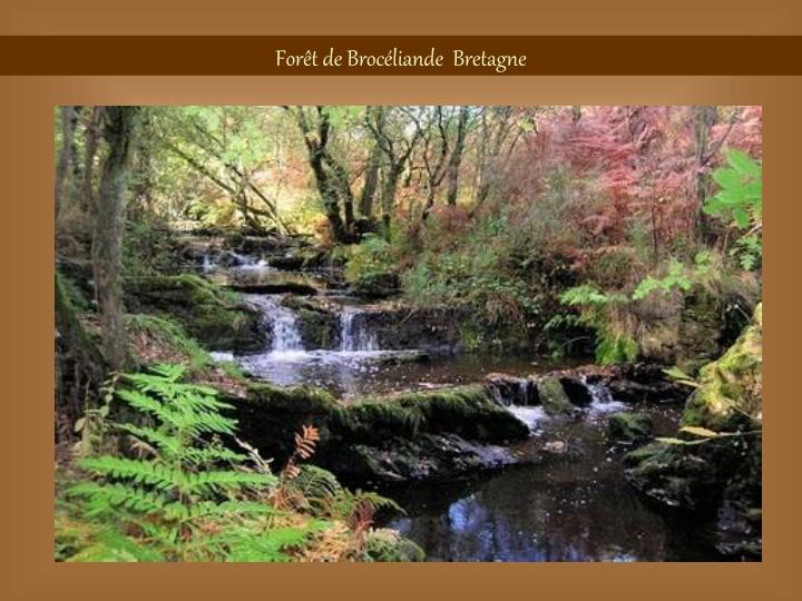 Forêt de Brocéliande  Bretagne
