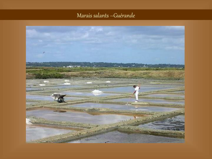 Marais salants –Guérande