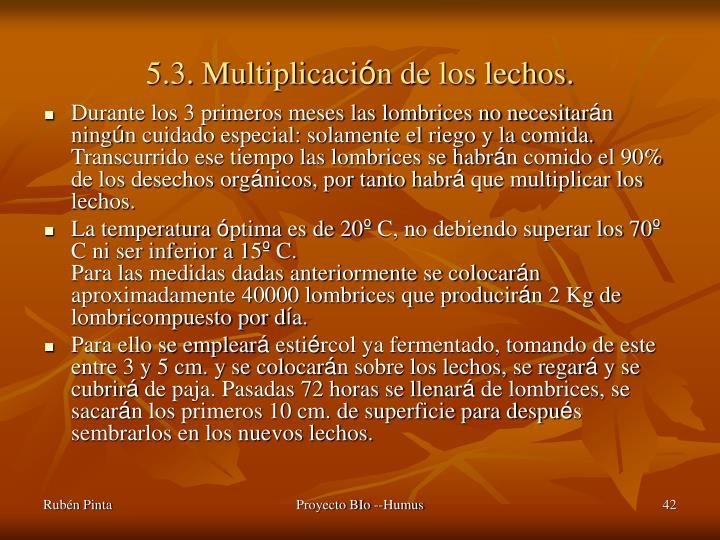 5.3. Multiplicaci