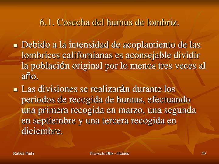 6.1. Cosecha del humus de lombriz.