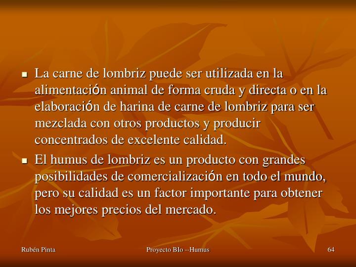 La carne de lombriz puede ser utilizada en la alimentaci