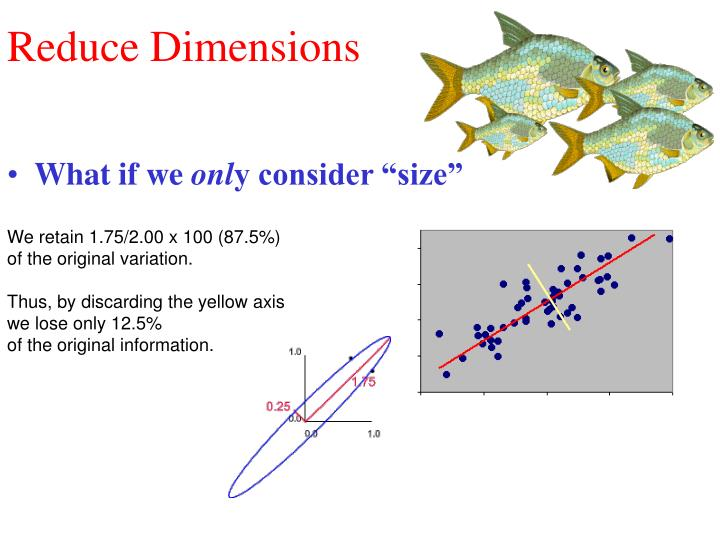 Reduce Dimensions