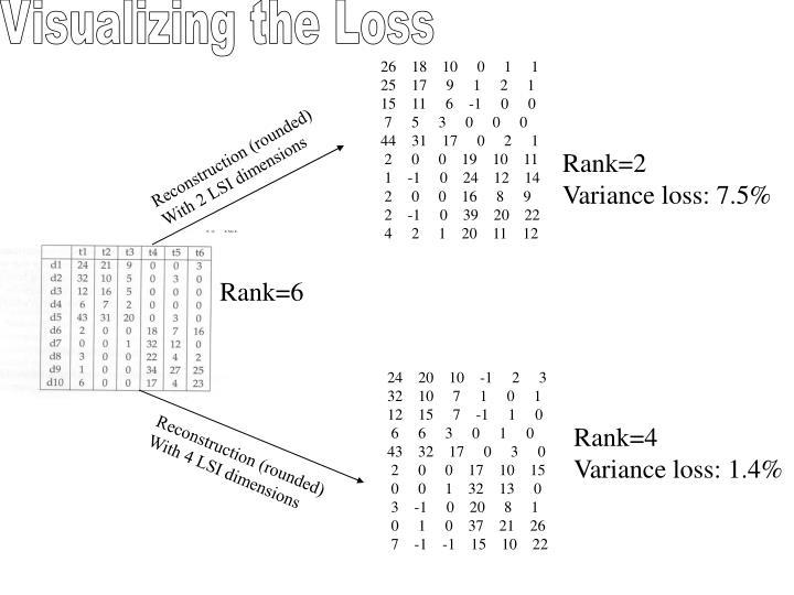 Visualizing the Loss