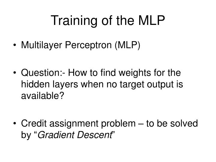 Training of the MLP