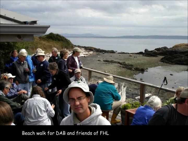 Beach walk for DAB and friends of FHL