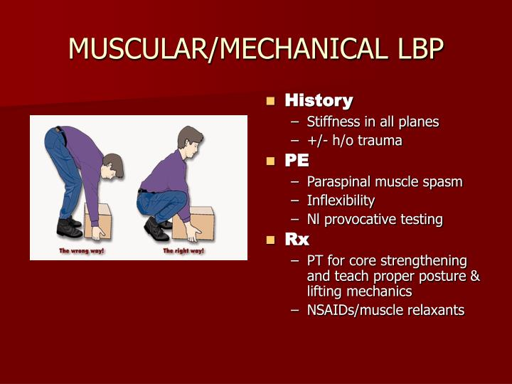 MUSCULAR/MECHANICAL LBP