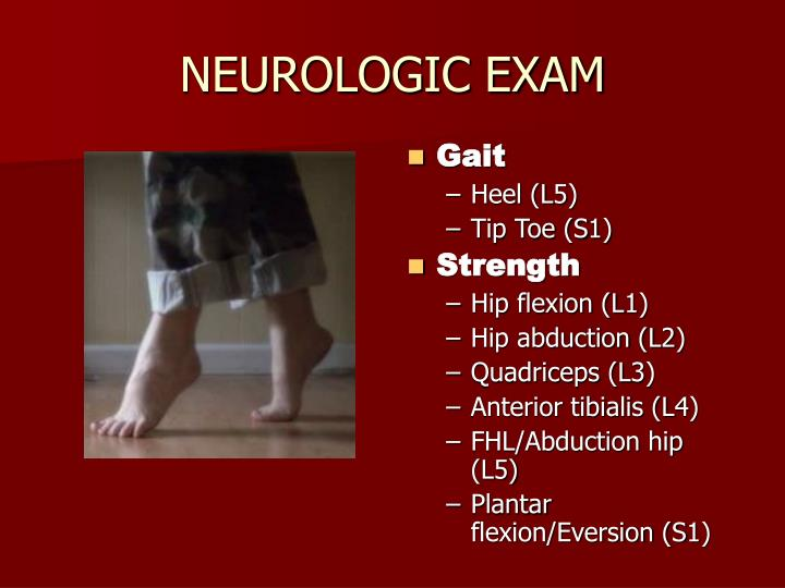 NEUROLOGIC EXAM