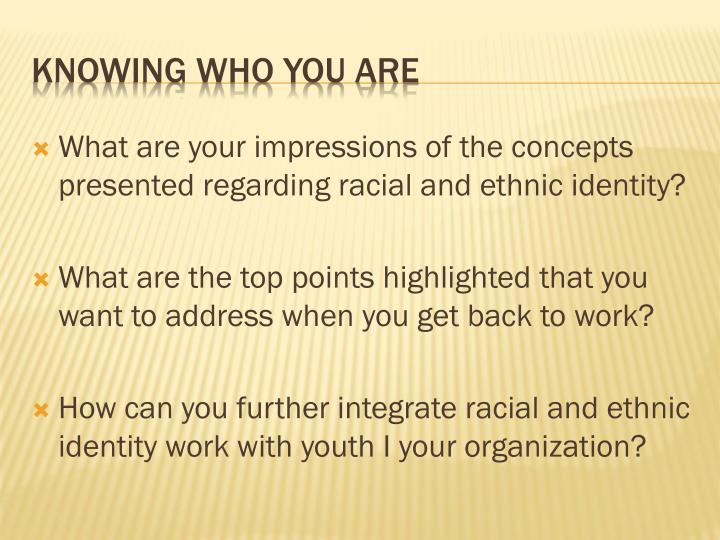 What are your impressions of the concepts presented regarding racial and ethnic identity?