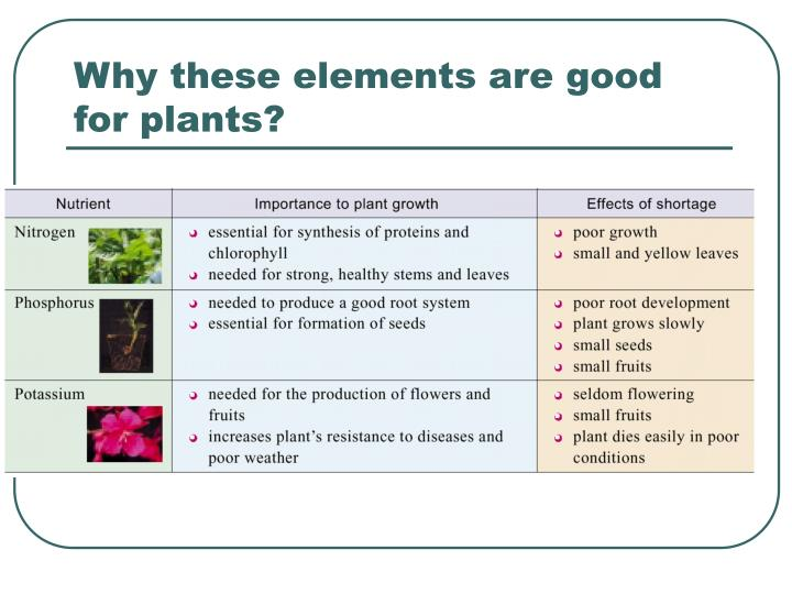 Why these elements are good for plants?