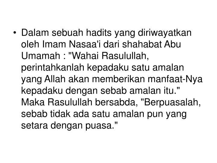 """Dalam sebuah hadits yang diriwayatkan oleh Imam Nasaa'i dari shahabat Abu Umamah : """"Wahai Rasulullah, perintahkanlah kepadaku satu amalan yang Allah akan memberikan manfaat-Nya kepadaku dengan sebab amalan itu."""" Maka Rasulullah bersabda, """"Berpuasalah, sebab tidak ada satu amalan pun yang setara dengan puasa."""""""