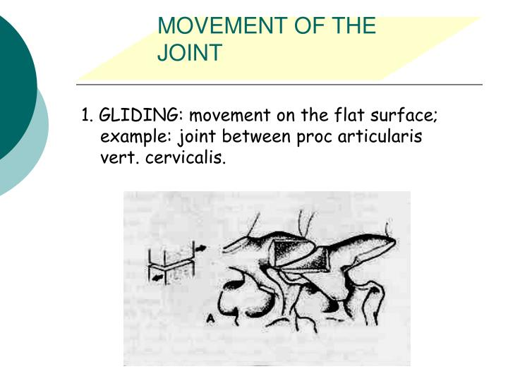 MOVEMENT OF THE JOINT