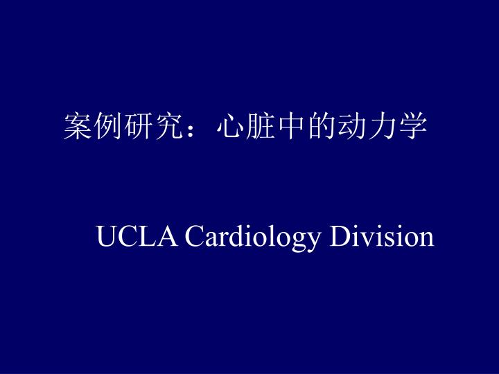 案例研究:心脏中的动力学