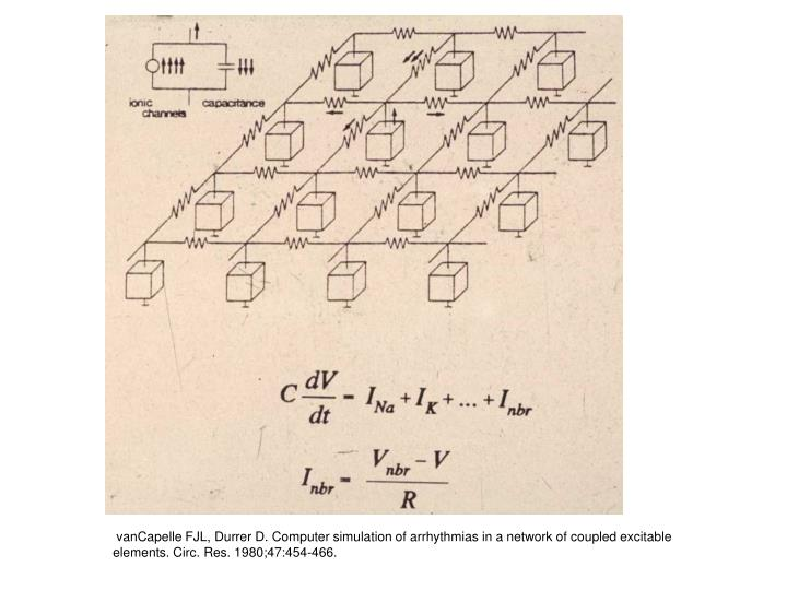 vanCapelle FJL, Durrer D. Computer simulation of arrhythmias in a network of coupled excitable elements. Circ. Res. 1980;47:454-466.