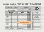 senior corps fgp or scp time sheet