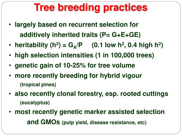 Tree breeding practices