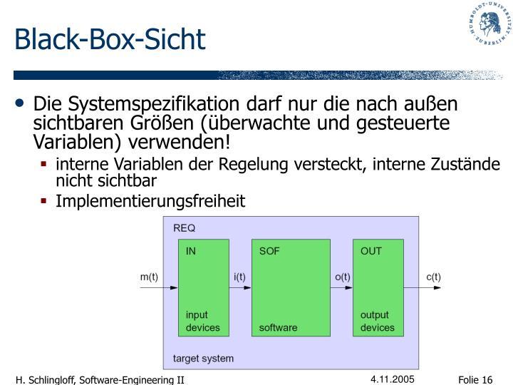Black-Box-Sicht