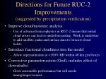 directions for future ruc 2 improvements suggested by precipitation verification