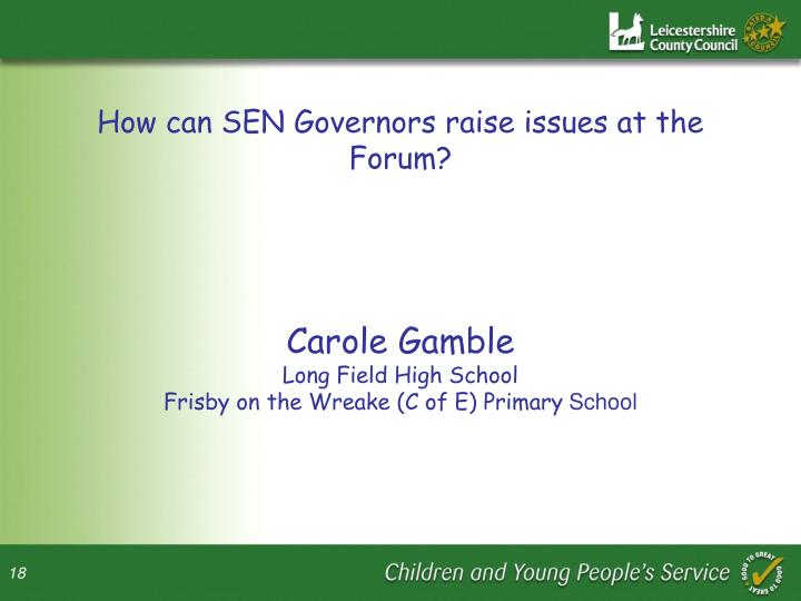 How can SEN Governors raise issues at the