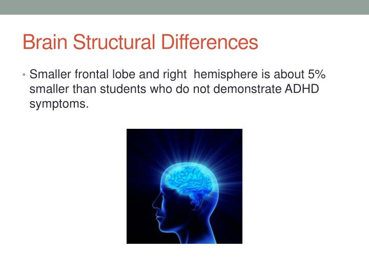 Brain Structural Differences