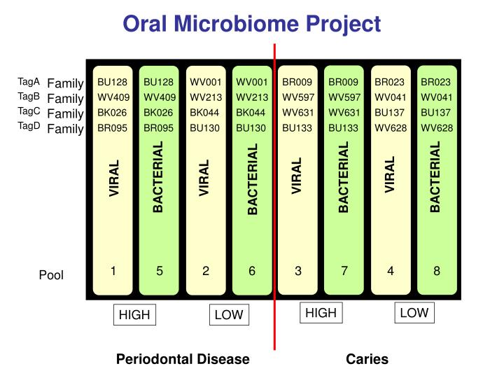 Oral Microbiome Project