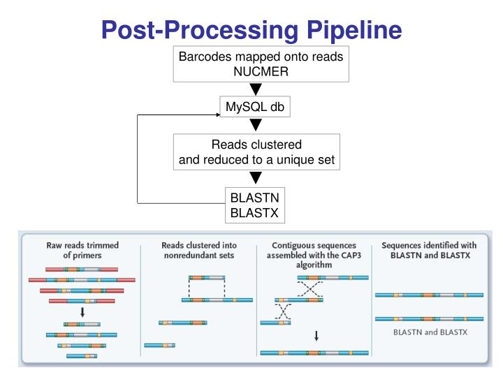Post-Processing Pipeline