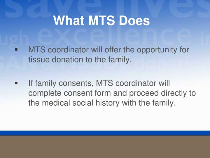 What MTS Does