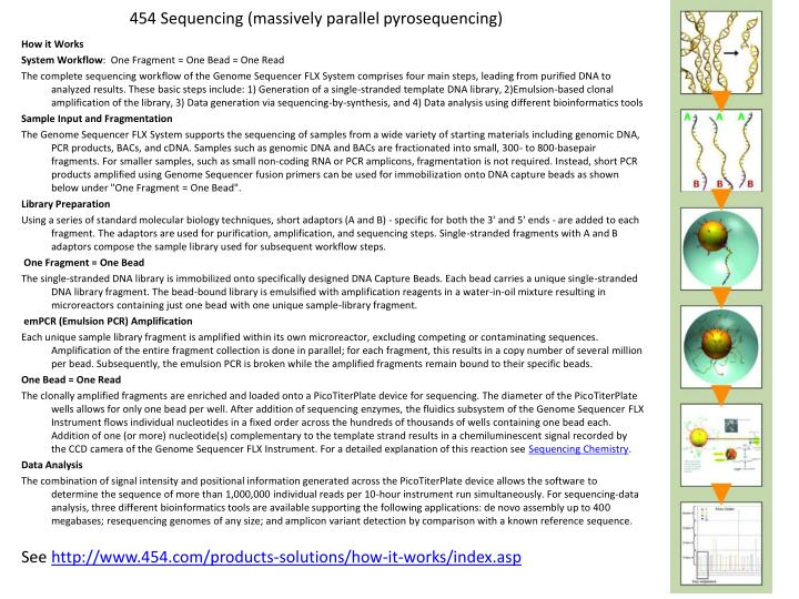 454 Sequencing (massively parallel pyrosequencing)