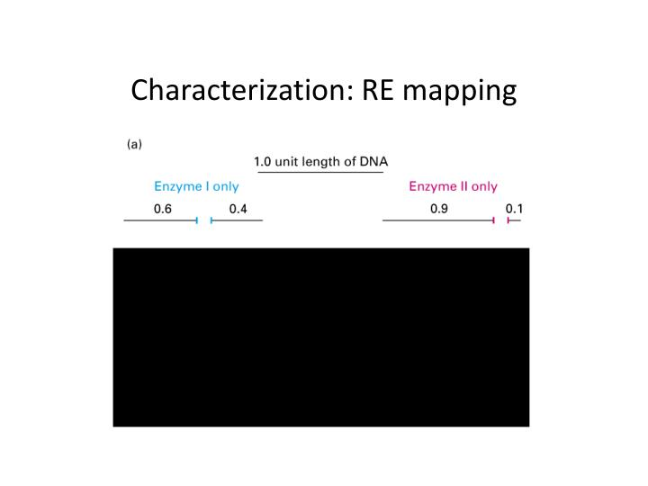 Characterization re mapping