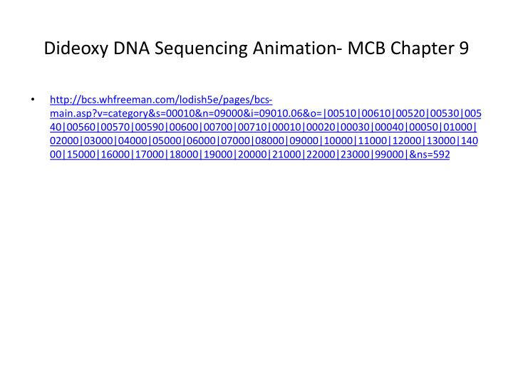 Dideoxy DNA Sequencing Animation- MCB Chapter 9