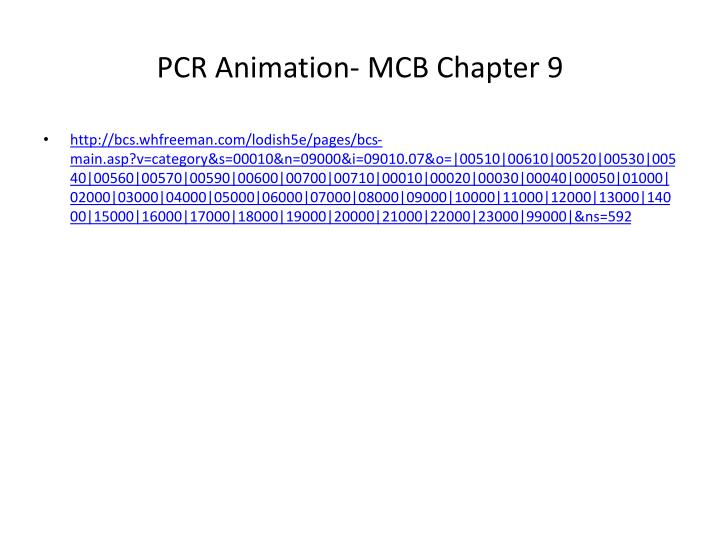 PCR Animation- MCB Chapter 9