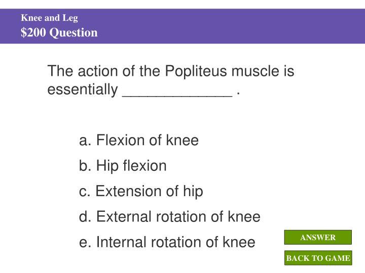 Knee and Leg