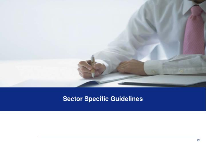 Sector Specific Guidelines