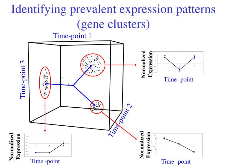 Identifying prevalent expression patterns (gene clusters)