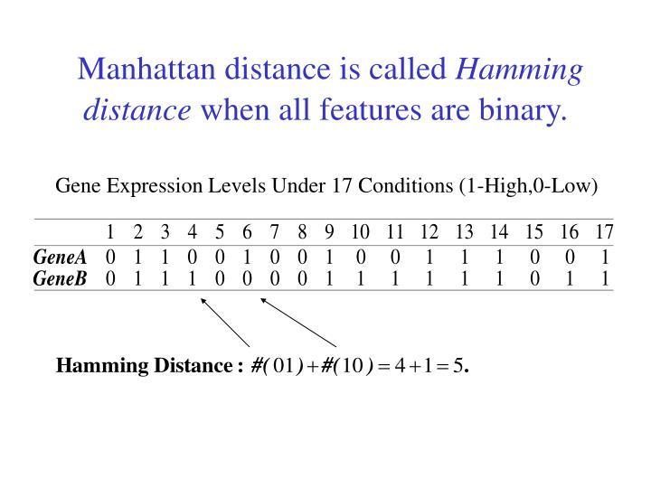 Manhattan distance is called