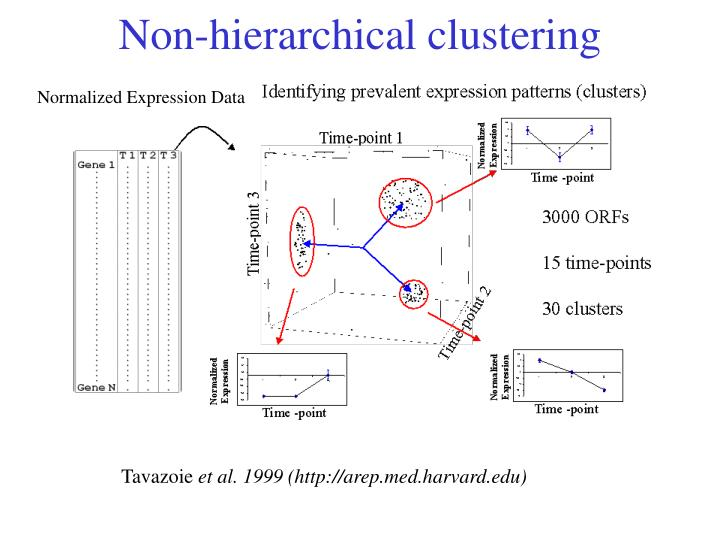 Non-hierarchical clustering
