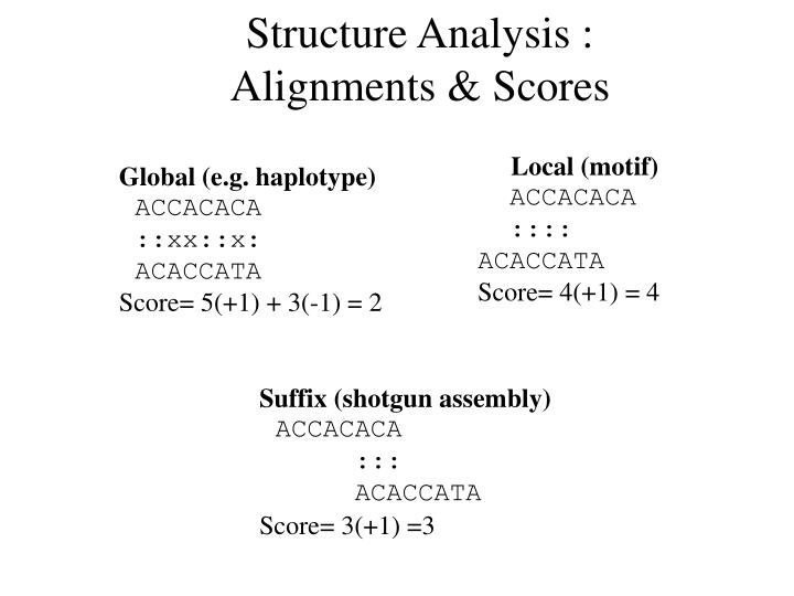 Structure Analysis :