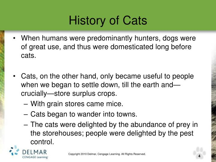 History of Cats